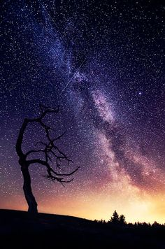 This is so unbelievable. I wish I could be there if only for one night so I could witness this gorgeous sky.