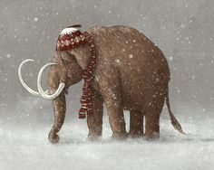 Buy Framed Wall Art with The Ice Age Sucked designed by Terry Fan. One of many amazing home décor accessories items available at Deny Designs. Elephant Illustration, Illustration Art, Terry Fan, Collages, Elephant Love, Elephant Artwork, Elephant Stuff, Ice Age, Illustrations