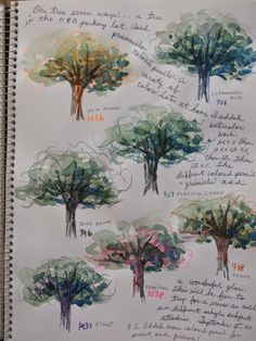 One Tree Seven Ways