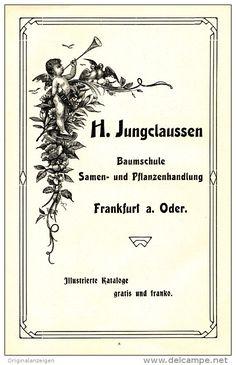 Original-Werbung/Inserat/ Anzeige 1904 - BAUMSCHULE JUNGCLAUSSEN / SAMEN UND PFLANZEN /FRANKFURT-ODER - ca. 130 x 210 mm