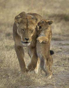 Hi Mom! ♥