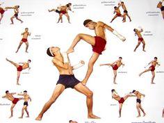 muay thai moves