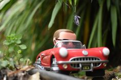 """https://flic.kr/p/QXpUVo 