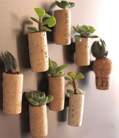 Click Pic for 50 DIY Home Decor Ideas on a Budget - Use Corks to Create Mini Planters - DIY Crafts for the Home