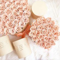 🍑🍑#themillionroses#design#luxury#flowerpower#flowershop#art#lifestyle#peachroses Big Flowers, Colorful Flowers, The Million Roses, Flower Boxes, Classic Collection, Fun Stuff, Bouquet, Bloom, Dreams