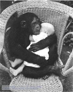 Affenliebe: Für mein Schwesterchen