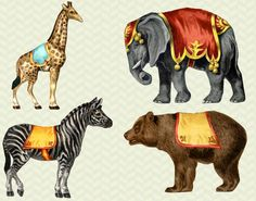 Vintage Circus Clip Art - Bear | Clip art, Graphics and Carousels
