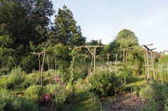 Parc de la Villa BURRUS - Les jardins - Jardin aromatique - www.jardins-burrus.fr