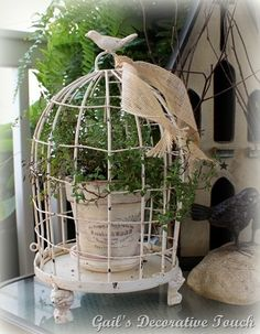 Bought an old wire birdcage not knowing what I would do with it...may add a flower pot to it.