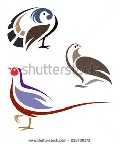 Stylized birds - Ruffed Grouse, Rock Ptarmigan and Ring-necked Pheasant - stock vector