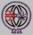 National Catholic Committee on Scouting - International Awareness Recognition 4 different program levels Tiger Cub, Bear Cubs, Cub Scouts, Scouting, Programming, Catholic, Patches, Faith, Youth Ministry