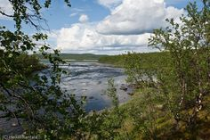 Könkämäeno (a river), Kilpisjärvi, Lapland, Finland, July 2009 by Heikki Rantala
