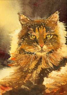 orange cat by Ally Benbrook in watercolors