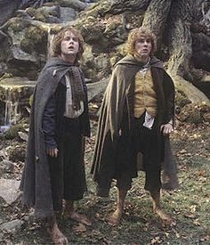 Mary and Pippin- Lord of the Rings