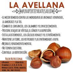 Avellanas