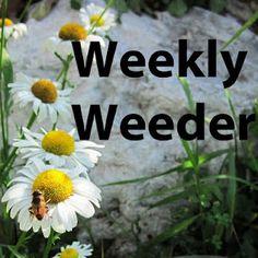 Weekly Weeder #1