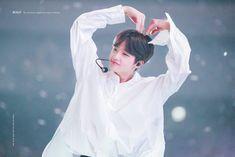 "BOLD on Twitter: ""190827 엑스원 데뷔 쇼콘서트   진짜 의문이다 어떻게 이렇게 이쁘지 ❓  #SonDongpyo #손동표  #孙东杓  #ドンピョ #X1 #엑스원… "" Bold Bold, My Goal In Life, 3 In One, Beautiful Smile, K Idols, Cute Boys, Boy Groups, Rain Jacket, Dancer"