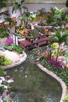 Koi pond in Singapore Changi airport