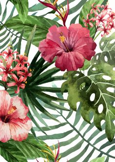 """Tropical Floral Pattern 02"" available as a metal poster! Beautiful botanical artwork to make your home space unique. Click through to see more similar artworks! #greenery"