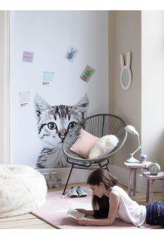 NEW Magna Cat Wallpaper - Kids - Indoor Living