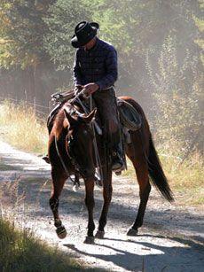 Une certaine idée de la classe à cheval... http://www.randocheval.com/