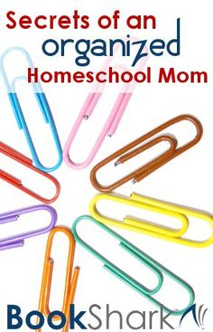 Secrets of an Organized Homeschool Mom (scheduled via http://www.tailwindapp.com?utm_source=pinterest&utm_medium=twpin&utm_content=post29121922&utm_campaign=scheduler_attribution)
