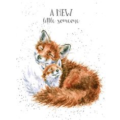 Beauty Illustration, Watercolor Illustration, Dandelion Drawing, Wrendale Designs, Baby Painting, Paint Cards, Fox Art, Winter Art, Watercolor Animals