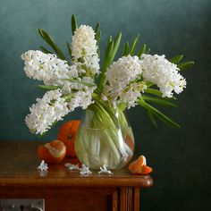 http://nikolay-panov.artistwebsites.com/products/simple-bouquet-of-hyacinths-nikolay-panov-art-print.html floral still life with simple bouquet of white hyacinths in a glass vase and few oranges laying on wooden table with green background lighted by daylight