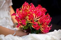Gloriosa Lily - 17 Most Breathtaking Flowers in Season in April - EverAfterGuide