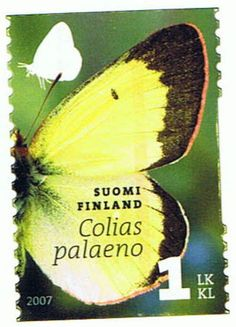Beautiful stamp from Finland received on FI_352366 via the Postcrossing.com Postcard Exchange Project.