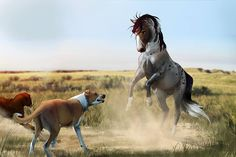 Stay or wild Dogs Horse Drawings, Animal Drawings, Art Drawings, Pretty Horses, Beautiful Horses, Horse Animation, Horse Sketch, Unicorn Art, Wild Dogs