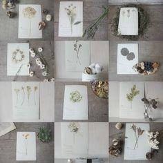 ドライフラワー dryflower カレンダーcalendar |FLEURI blog