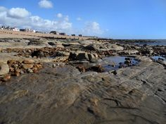 Exposed rock structures - Bexhill Beach