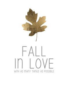 natural joy of autumn  X ღɱɧღ ||