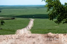 Dirty Kanza 2013 Pictures | Climbing into the wind, out of the Teterville valley and into the ...