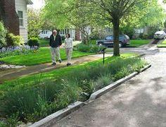 Hyperlocalizing Hydrology in the Post-Industrial Urban Landscape Green Street, Urban Landscape, Landscape Design, Drainage Solutions, Water Management, Rain Garden, Sustainable Design, Sustainable Development, Urban Planning