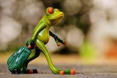 Free Image on Pixabay - Frog, Farewell, Travel, Luggage Indian Home Decor, Moroccan Decor, Retro Home Decor, Cheap Home Decor, Primitive Bedroom, Primitive Kitchen, Home Decor Accessories, Decorative Accessories, Sapo Meme
