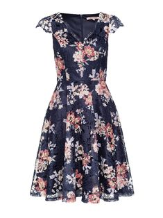 Floral Fashion, Fashion Dresses, Occasion Wear, Special Occasion, Vintage Inspired Dresses, Review Dresses, Scalloped Lace, Midnight Blue, A Line Skirts