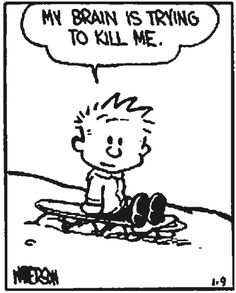 calvin commentary.