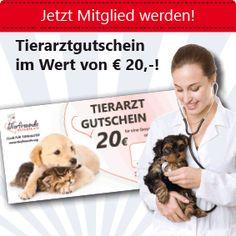 Tierarztgutschein im Wert von EUR 20,00 für alle Mitglieder der Tierfreunde Österreich Dogs, Animals, Vet Office, Animales, Animaux, Pet Dogs, Doggies, Animal, Animais
