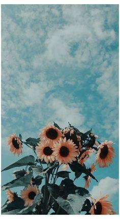 simple wallpaper iphone tumblr black