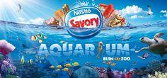 Savory | Gráfica Aquarium Buin Zoo