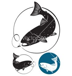 Trout fish vector 960457 - by kvasay on VectorStock®