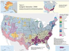 This map showing the Diverse Ancestry of the United States shows 2 things: the ethnic richness of their history, and the shocking hypocrisy of the bigotry and prejudice that exists in the country. Luckily, not all Americans fall under the second umbrella.