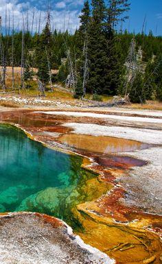 Black Pool. West Thumb Geyser Basin, Yellowstone National Park, Wyoming.