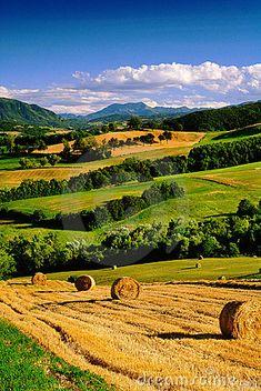 Italian countryside,Parma, Italy