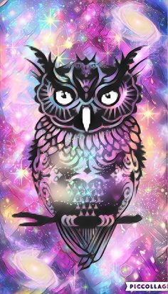 Owl hipster galaxy by Rose
