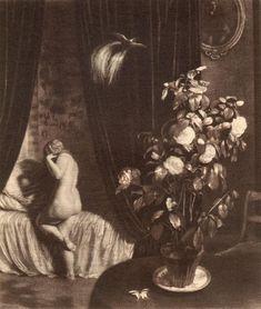 Max Švabinský, White Camellia,1911