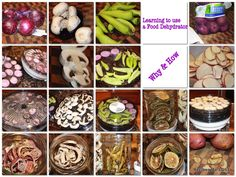 Learning to use a Food Dehydrator