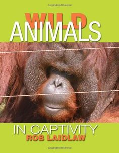 Wild Animals in Captivity School Librarian, Reading Levels, Primates, Nonfiction Books, Good Books, Wild Animals, This Or That Questions, Music, Elephants